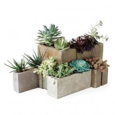 cinderblock and wood shelving - Google Search