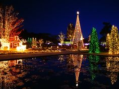 Beautiful Christmas Trees For Outdoor Decorations With Colorful Lights Making A Great Reflection On The Pool Surface:   Interior Design Suggestions