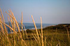 Cape Cod Seashore Wellfleet