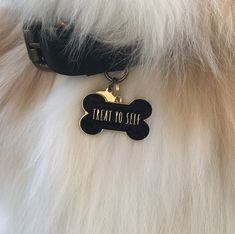 In the name of retail therapy, a piece of chocolate, and a good facial, treat yo' self to a little style with this 'Treat Yo Self' Pet ID Tag. Your pup is so good. They wait for you all day. They sit for treats. They cry when Mufasa dies. They're such good boys and girls. Treat them! And give yourself a treat too for being such a good dog mama. Treats for everyone with the 'Treat Yo Self' Pet Id Tag. Available is black and white so your pup's style is always fresh. Free engraving. Add your… Custom Engraving, Laser Engraving, Pet Id Tags, Dog Name Tags, Pet Names, Dog Store, Retail Therapy, Cute Love, Dog Life