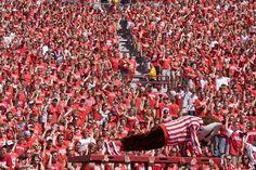 Great Badger fans applauding Bucky Badger.
