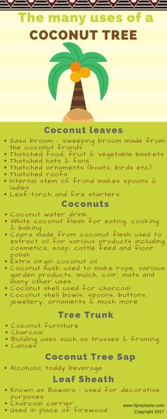 Sweeping Broom, Coconut Leaves, Vegetable Basket, Thatched Roof, Fire Starters, Fiji, Infographics, Channel, Youtube