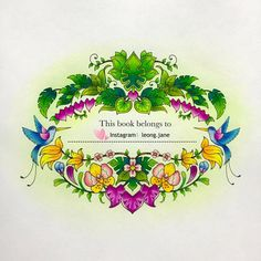 Colored Pencil Drawings Art Pencils Colour Therapy Adult Coloring Books Jungles Johanna Basford Book Color Magic