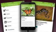 La Oropéndola 100% Sostenible: APP gratuita sobre Biodiversidad para la Educación Ambiental