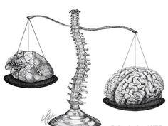 Brain,heart, equilibrium