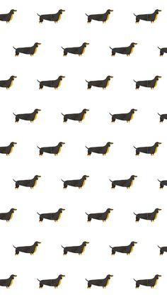 Teckels everywhere - Ipad Wallpaper Backgrounds For Your Phone, Tumblr Backgrounds, Cute Backgrounds, Tumblr Wallpaper, Cute Wallpapers, Animal Print Wallpaper, Painting Wallpaper, Pastel Wallpaper, Homescreen Wallpaper