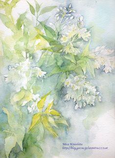 卯の花といえば - 本日もスケッチびより! Watercolor Flowers, Watercolor Paintings, Ballet Art, Botanical Drawings, Watercolour Tutorials, Painting & Drawing, Illustration Art, Art Prints, Abstract