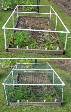 Low-Cost Gardening Projects With PVC Pipes - My Favorite Things