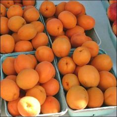 Step-By-Step for Perfect Apricot Jam Apricot Dessert, Apricot Cake, Apricot Fruit, How To Make Jam, Food To Make, Canning Apricots, Dental, Apricot Jam Recipes, Ripe Fruit