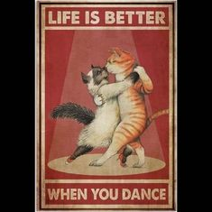 """Batman TramCat on Instagram: """"It's FRIDAY! 😸🕺 Here's some silliness to kickstart your weekend! 😹😹😹 Every one of us at Batman Tram Cat headquarters, sends every one of…"""" Crazy Cat Lady, Crazy Cats, I Love Cats, Cool Cats, Cat Posters, Movie Posters, Here Kitty Kitty, Vintage Wall Art, Cat Signs"""