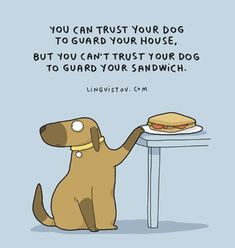 Cant trust the dog with your sandwich, 🍕 , or 🌭 Cat Love, I Love Dogs, Puppy Love, Cute Dogs, Dog Quotes Funny, Funny Dogs, Dog Comics, Crazy Dog Lady, Dog Rules