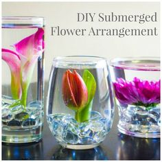 Looking for a fun and modern way to display flowers? Using a submerged flower display can be both beautiful and breathtaking. Making your own underwater flower display is a lot easier than you&#8…