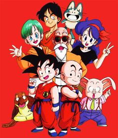 Camiseta niño Dragon Ball Z. Personajes