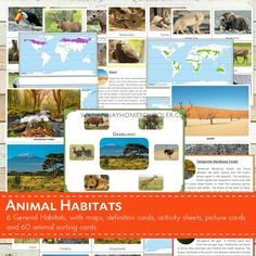 I created this file for our geography and animal studies at home. We use this to study the different biomes (habitats) of the world and the animals that thrive on it. This printable is suitable for SORTING ACTIVITIES as well. The pictures I provided are big and clear enough for classroom discussion
