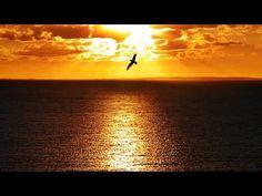 Ποιος είν' τρελός από έρωτα - Φλέρυ Νταντωνάκη - YouTube