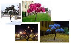 Living Tree Art – Earl Senchuk
