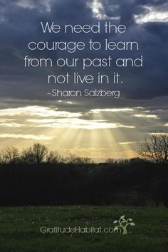 We need the courage to learn from our past and not live in it.  ~Sharon Salzberg   Visit us at: www.GratitudeHabitat.com #inspirational-quote #Sharon-Salzberg