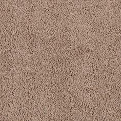 Sorcha Plus Solid By Tigressa From Flooring America Nathan Hunter Healthy Affordable Carpet Options