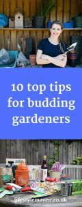 If you have a garden or allotment and want to know how to get it ready for summer, look no further. I've collected some top tips for you budding gardeners, to get your garden ready. 10 top tips for budding gardeners http://www.lifestylemaven.co.uk/top-tips-for-budding-gardeners/?utm_campaign=coschedule&utm_source=pinterest&utm_medium=Vicki%20Marinker%2C%20Blogger%20at%20LifestyleMaven.co.uk%2C%20for%20your%20fabulous%2040s%20and%20beyond&utm_content=10%20top%20tips...