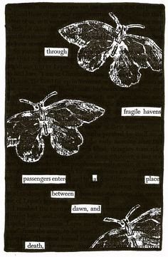 – – – Source:A Separate Peaceby John Knowles Black Out Poetry: c.b.w. 2016 More Black Out Poetry