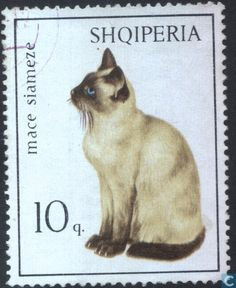 Postage Stamps - Albania [ALB] - Cats