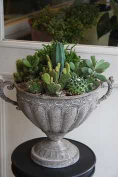 "Succulents - I have an old ""german silver"" sugar bowl. It does't look as bad as this but it would be really neat with some succulents in it."