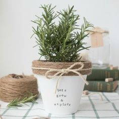 Make this cute terracotta pot using paint, twine and stamps.