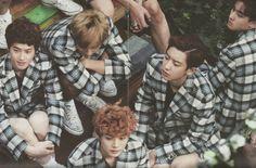 EXO [ Die Jungs Photobook ]