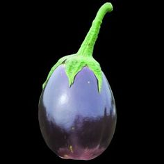 Thai Purple Egg eggplant from Baker Creek Heirloom Seeds...