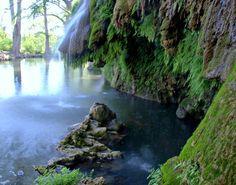 Krause Springs  Spicewood, TX