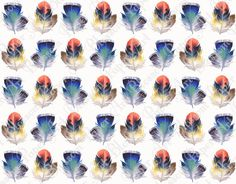Feathers Scrapbooking Paper - Blue - Red - Digital Download Image - 12x12 inches - 300 dpi