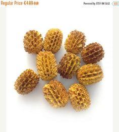 10 Agoha blüten, gelb, 12mm, 10 Stück, Samenperlen, Perlen, natur, Naturperlen, natural beads, Naturschmuck