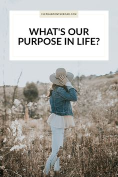 What's Our Purpose In Life