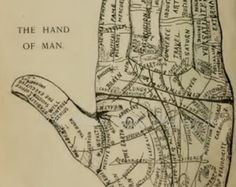 Palm Reading Diagram | Palmistry, Palm Reading, Lines of t he Hand, Symbols, Cheiromancy ...