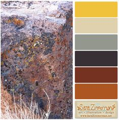 fall color palette graphic design - Google Search
