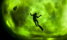 A diver swimming beneath thick ice appears in bold silhouette against the breathtaking backdrop of the Northern Lights