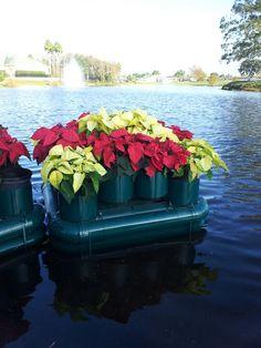 Floating Flower bed