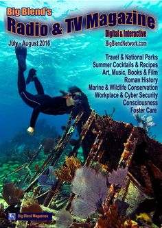 Big Blend's Radio & TV Magazine Jul/Aug 2016  Big Blend Radio & TV Magazine – Summer 2016: Summer Cocktails and Recipes, American National Parks and Travel, Catalunya Spain to Norfolk UK, Art and Books, Music and Film, Marine and Wildlife Conservation, Workplace and Cyber Security, Foster Care and Education, Health and Consciousness.