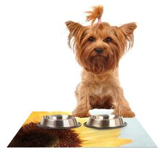 Kess InHouse Susannah Tucker 'Sunshine' Sunflower Feeding Mat for Pet Bowl, 18 by 13-Inch * Startling review available here  : Cat items