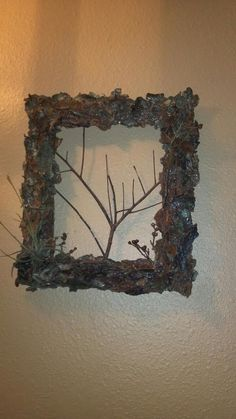 Old Picture Frame with Bark from a Drake Elm tree hot glued with a branch in the center for the RUSTIC look