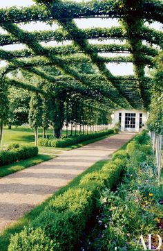 At Oak Spring, 'Mary Potter' crab apples are cordoned over a pergola that leads from the walled garden to the greenhouses (doors shown) | archdigest.com