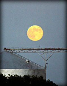 Photos: Once in a blue moon   Amarillo Globe-News