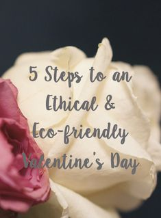 As well as some last minute gift ideas, I've picked out some great brands and products for you so you'll have everything you need for a steamy and sustainable evening. #ethical #ethicalvalentines #valentines #valentinesday #flower #flowers #ethicalflowers #veganchocolate #chocolate #blog #ecoblog #ecoblogger #sustainability #sustainable