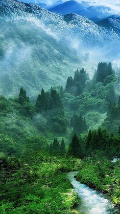 Nature Mist Mountain Wood Forest River Landscape #iPhone #5s #wallpaper
