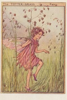 Cicely M Barker Fairies of the wayside ill 15 the tottergrass fairy 1948 | Flickr - Photo Sharing!
