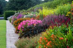 Image galleries of RHS Garden Wisley in Surrey / RHS Gardening