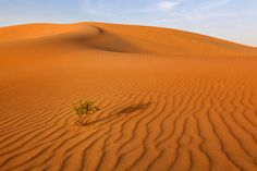 Liwa Desert 2 - Reworked by Rob Wilson - Photo 132185267 - 500px