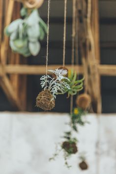 Rustic Chic South African Warehouse Wedding at Blue Bird Garage African Love, Warehouse Wedding, Hanging Plants, Rustic Chic, Blue Bird, Bird Feeders, Our Wedding, Style Me, Pretty