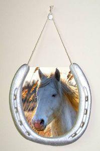 Horseshoe Crafts | How to Make Horseshoe Picture Frames thumbnail