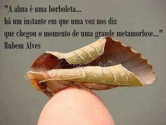 Rubem Alves